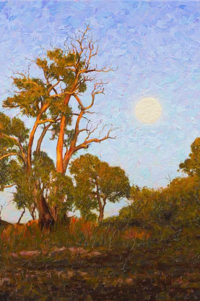 the-cusp-of-eve-australian-landscape-oil-painting-by-michael-hodgkins